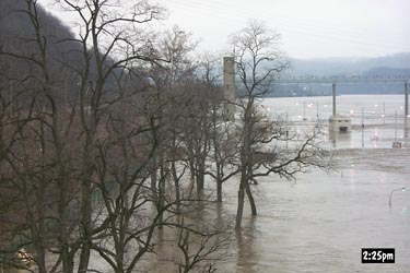 Flood waters inundate the tree line along the Monongahela River.