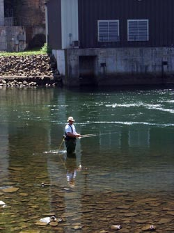 Angler at Youghiogheny Dam outflow